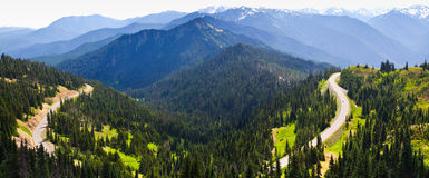 Mountains and winding road, Olympic National Park Stock Photo