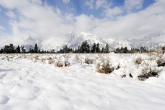Mountains in Winter. Snow-covered mountains in winter royalty free stock photo