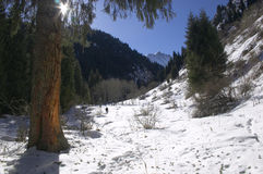 Mountains at winter. Mountain ravine in the winter. People go on a track Royalty Free Stock Photos