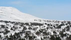 Mountains in winter with white pure snow against the blue sky in the afternoon. Snowy mountains with coniferous and deciduous trees covered with snow against the stock footage