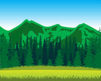 Mountains and wood by summer Royalty Free Stock Image