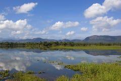 Wasgamuwa park scenery in sri lanka Royalty Free Stock Images