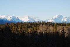 Mountains and Woods. A landscape view across a wooded ridge with snow capped mountains of British Columbia, Canada in the background stock photography