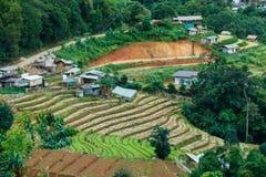 Mountains& x22 da paisagem; dao& x22 do ing de segunda-feira; A área de Chiang Mai é o cume no distrito da vila de Hmong Imagens de Stock Royalty Free