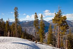 Mountains in Yosemite Royalty Free Stock Image