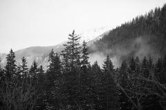 Mountains - Zakopane in the winter - monochrome Stock Photography