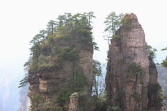 Mountains zhangjiajie Royalty Free Stock Image