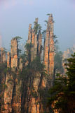 Mountains zhangjiajie Royalty Free Stock Photo