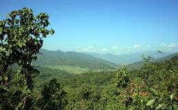 Mountainscape. A panoramic view of the mountains in Thailand Stock Photography