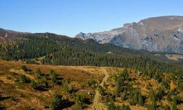 Mountainscape of Grindelwald, Switzerland royalty free stock images