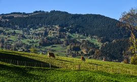 Mountainscape of Grindelwald, Switzerland stock photo