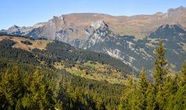 Mountainscape of Grindelwald, Switzerland royalty free stock photo