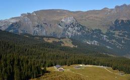 Mountainscape of Grindelwald, Switzerland royalty free stock photography