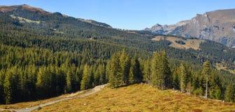 Mountainscape of Grindelwald, Switzerland stock images