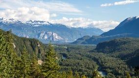 Mountainscape przez lato lasu zdjęcia stock