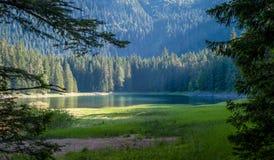 Mountainsee im Rahmen von Bäumen am Abendsonnenlicht Lizenzfreies Stockbild