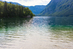 Mountainsee im Sommer - See Bohinj Lizenzfreies Stockbild