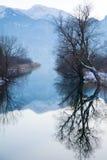 Mountainsee im Winter, Bäume mit Reflexion im ruhigen Wasser Stockbild