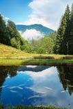 Mountainsee mit Fischen Lizenzfreies Stockbild