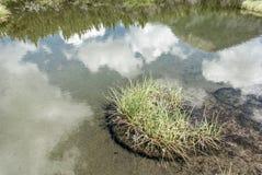 Mountainsee-Spiegelreflexion mit einem kleinen Flecken des Grases Stockbilder
