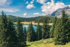 Mountainsee und Bäume an einem sonnigen Tag Stockfotografie