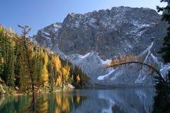 Mountainsee und herbstliche Bäume Stockbild