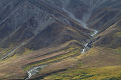 Mountainside in Alaska Royalty Free Stock Images