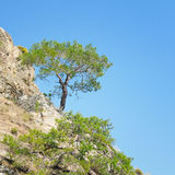 mountainside and blue sky Royalty Free Stock Image