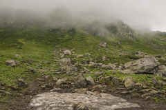 Mountainside covered with clouds. Mountainside with bushes covered with clouds Stock Photography