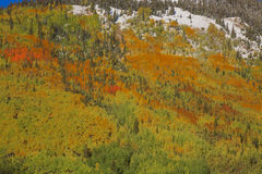 Mountainside in Fall Royalty Free Stock Images
