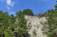 Mountainside of Lozen mountain with talus and forest at the top Stock Image