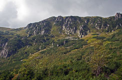 Mountainside with rocks in Sudety Stock Photo