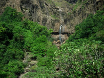 Mountainside waterfall. Rugged mountainside forest with distant cliff and waterfall stock photography