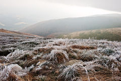 Mountainsides with frozen grass and fog on hill. Royalty Free Stock Image