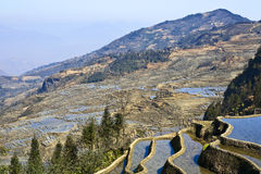 Mountainsides of Rice. The steep mountainsides etched with a thousand years of rice terraces made by the Hani people in Yuanyang, southern Yunnan province, China Stock Image