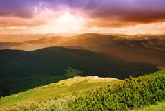 Mountainssunset and pine forest. Beautiful sunset and pine forest in Carpathian mountains stock photography