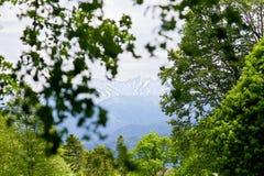 Mountaint-Landschaft Stockfotografie
