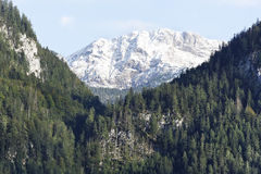 Mountaintop Royalty Free Stock Images