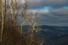 Mountaintop view Vermont winter. View from the top of a mountain in the wintertime upstate Vermont Royalty Free Stock Image
