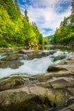 Mountain waterfall Guk in the wood. Ukrainian Carpathians. Mountainwaterfall Guk in the wood landscape. Ukrainian Carpathians Stock Images