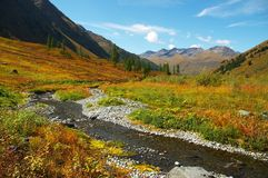 mountais river zdjęcie stock