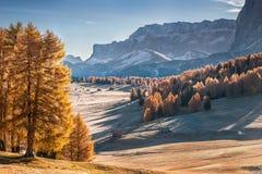 Mountan in Alpe de Siusi Fotografie Stock