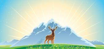 Mountan landscape and deer Stock Photos