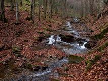 Mountanneous stream autumn season. Autumn in the mountains - Beskid Sadecki Stock Images