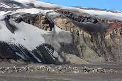 Mountans de neige en Antarctique Image libre de droits
