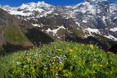 Mountans dello svizzero della sorgente Immagini Stock Libere da Diritti