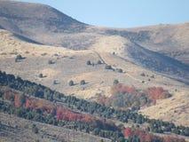 Mountaon fotografia stock