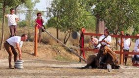 Mounted archery Royalty Free Stock Photo