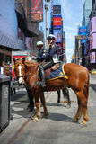 New York City Mounted Cops royalty free stock photography