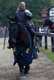 Mounted knight Stock Images